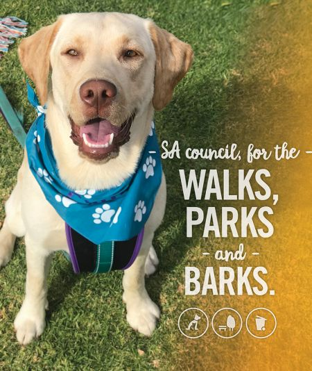 Part of your everyday - Walks Parks and Barks